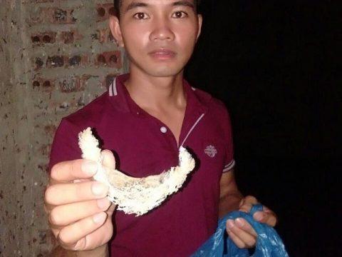 Anh Nguyễn Văn Chiến đang kheo với phóng viên sản phẩm mình vừa thu hoạch được